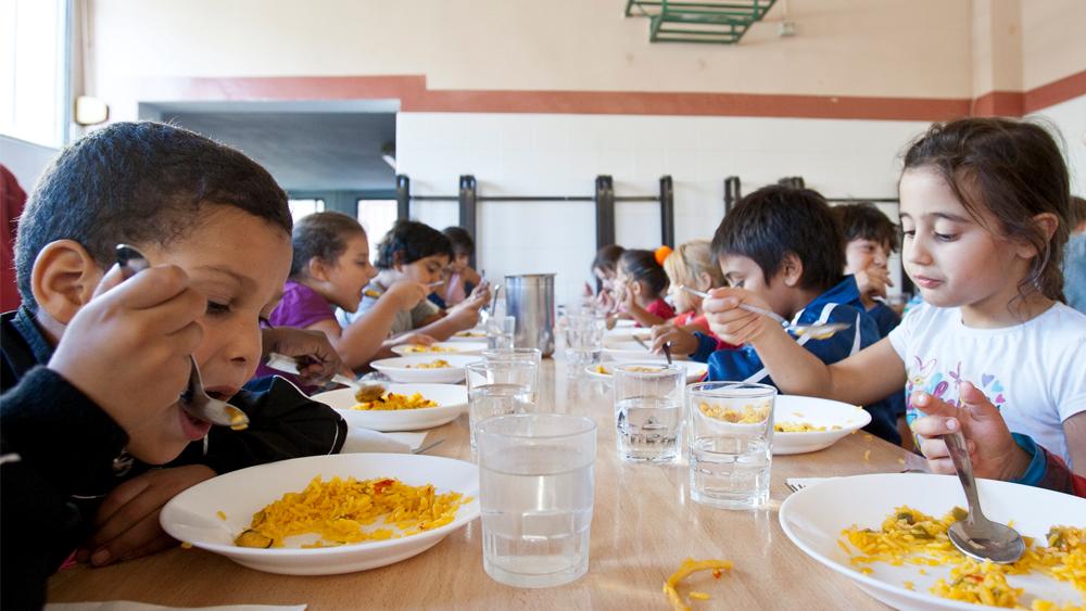 Programas para empresas soft restaurant for Comedor estudiantil